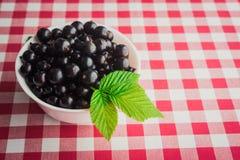 Currants berry Stock Photos