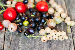 Currants, cherries and other summer fruits Stock Photo