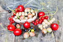 Currants, cherries and other summer fruits Royalty Free Stock Photography