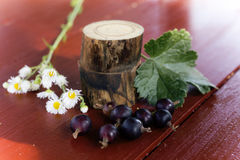 Currants and daisies on the table. Still life. Macro photo Stock Photography