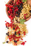 Currants different colors - red, black, white Royalty Free Stock Photo