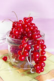 Currants in the glass Royalty Free Stock Photo