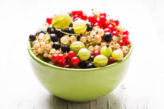Currants and gooseberry Stock Photo