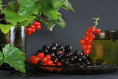 Currants and herbal tea. Red and black currant. Cup of herbal tea with currant's leafs on grey background Stock Image