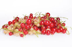 Currants Stock Photography