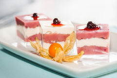 Currants Parfait Stock Photography