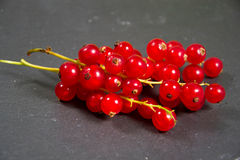 Currants. A photo of some currants Stock Images