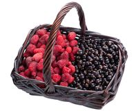 Currants and raspberries in a basket Stock Photo