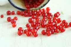 Currants. Red currants on a table royalty free stock images