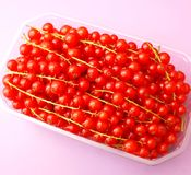 Currants. Some fresh red currants in a bowl Royalty Free Stock Image