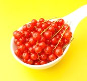 Currants. Some fresh red currants in a bowl Royalty Free Stock Photography
