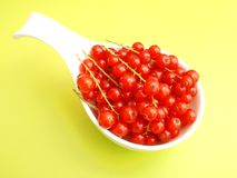 Currants. Some fresh red currants in a bowl Stock Images