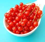 Currants Royalty Free Stock Image