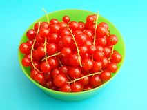 Currants. Some fresh red currants in a bowl Royalty Free Stock Photo
