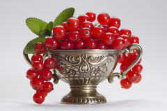 Currants. Some currants in a vintage cup Stock Photography
