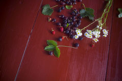 Currants, strawberries and daisies on the table. Still life. Macro photo Stock Photos
