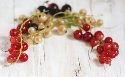 Currants are of three colors - red, white and black. On the napkin Royalty Free Stock Images