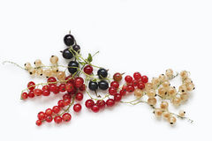 Currants are of three colors - red, white and black. On the napkin Royalty Free Stock Photography