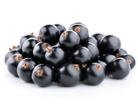 Currants  on white. Black currants berries  on whiter Royalty Free Stock Photography