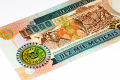 Currency banknote of Africa Royalty Free Stock Images