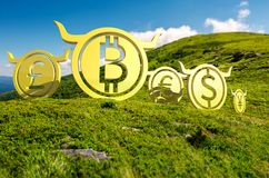 Currency coin race to the top. Bullish currency on the top of a hill. green summer mountain ascending trend. stand proud on the peaks at high noon. demanding or Royalty Free Stock Photography