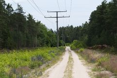 Current route. Power line, power poles, through a wooded area in Europe Royalty Free Stock Photos