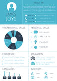Curriculum vitae template. Resume template with infographics and icons. CV vector royalty free illustration