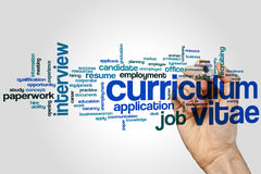 Curriculum vitae word cloud concept on grey background Royalty Free Stock Photo