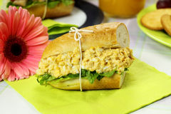 Curried Egg And Lettuce Roll Stock Image