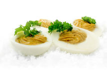 Curried Eggs Royalty Free Stock Images