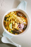 Curried Noodle Soup. Royalty Free Stock Photo