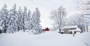 Currier and Ives-type scene. Affects on Alden, NY of a lake affect snowstorm coming off Lake Erie in Western New York. Approximately 18:00 on 19 November 2014 Royalty Free Stock Photos