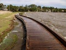 Currituck遗产公园的木板走道 库存照片
