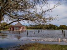 Currituck遗产公园的木板走道 库存图片