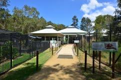 Currumbin przyrody sanktuarium szpital Zdjęcie Royalty Free