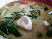 curry зеленый цвет Стоковая Фотография