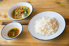 curry зеленый цвет Стоковые Изображения RF