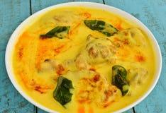 curry индийский vegetarian Стоковые Изображения RF