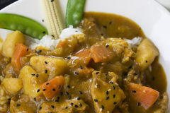 Curry Stock Photography