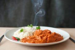 Curry royaltyfri fotografi