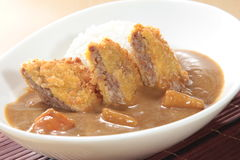 curry Arkivbild