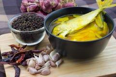 Curry amarillo meridional tailandés con los pescados de la caballa Fotografía de archivo