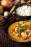 Curry amarillo tailandés fotografía de archivo libre de regalías