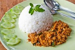 Curry asciutto del pollo Fotografia Stock