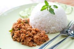 Curry asciutto del pollo sul piatto verde Fotografie Stock Libere da Diritti