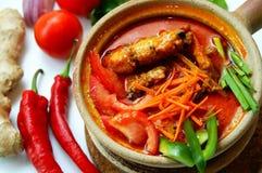 Curry autentico del gamberetto fotografie stock