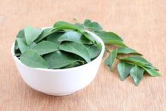 Curry-Blätter in einer Schüssel Lizenzfreie Stockfotos