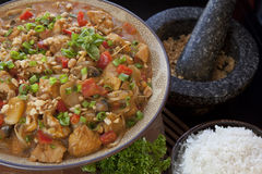 Curry Bowl Royalty Free Stock Photography