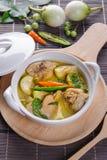 Curry caldo piccante di verde del pollo con la minestra del latte di cocco Immagine Stock