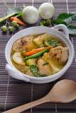 Curry caldo piccante di verde del pollo con la minestra del latte di cocco Fotografie Stock Libere da Diritti